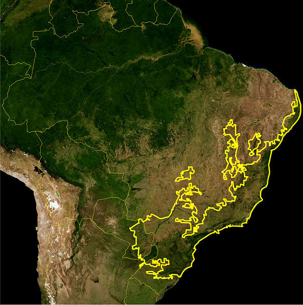 Atlantic Forest Biome, as delineated by the WWF