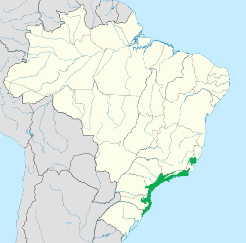 Approximate area of the Serra do Mar coastal forests ecoregion