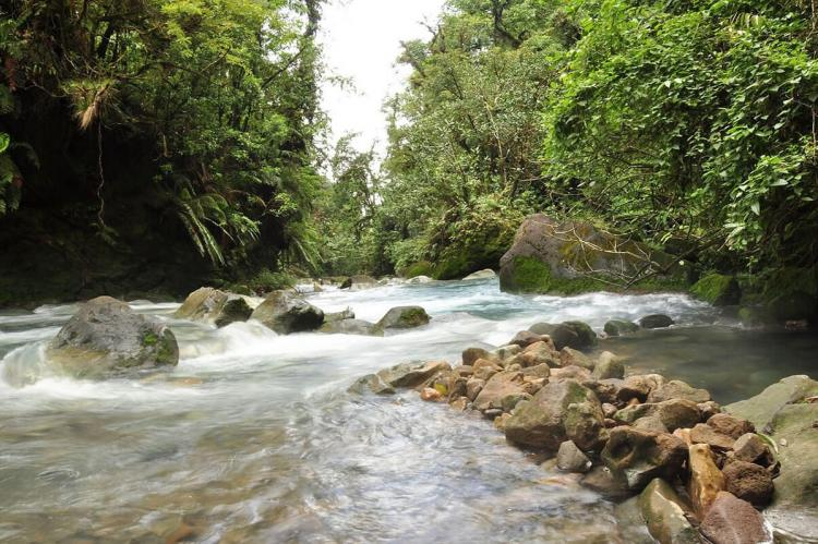 Tenorio National Park, core area of the Agua y Paz Biosphere Reserve, Costa Rica