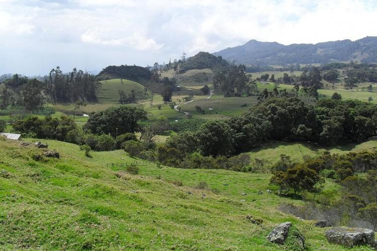 Typical landscape of the Altiplano Cundiboyacense in Boyaca Colombia