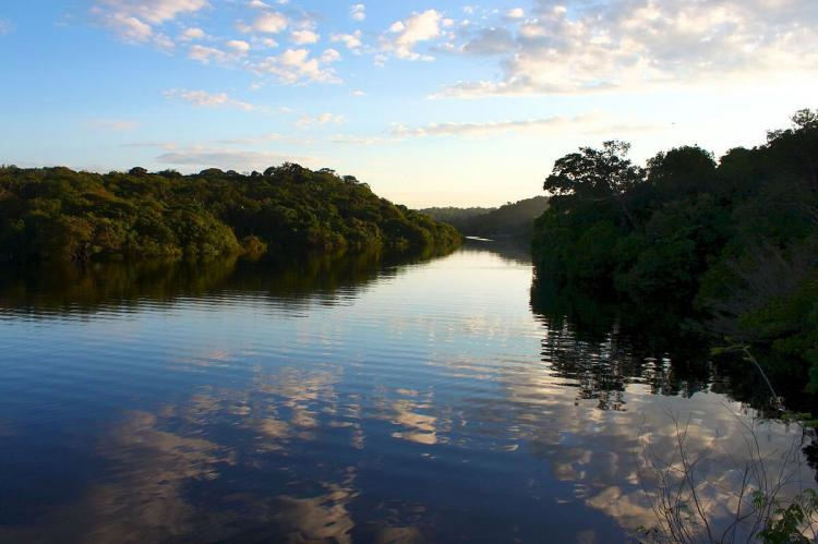 Sunrise over waterway, Jaú National Park (Brazil)