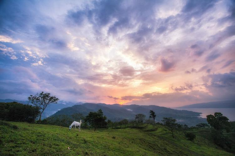 Arenal Lake Sunset with a white horse in Costa Rica