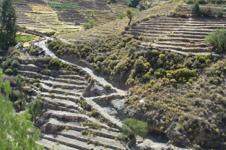 Inca Trail (Qhapaq Ñan) and terraces, Tarata - Ticaco