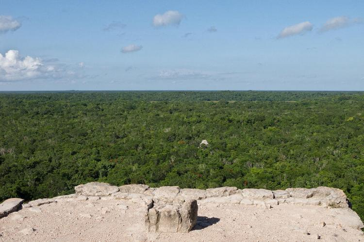Forests surrounding the ancient Maya city of Cobá in the northeast of the Yucatán Peninsula, Mexico