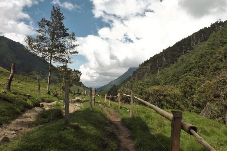 Hiking trail, Cocora Valley, Colombia