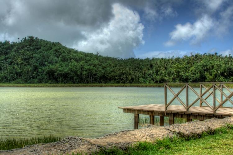 Grand Etang National Park and Forest Reserve (Grenada)