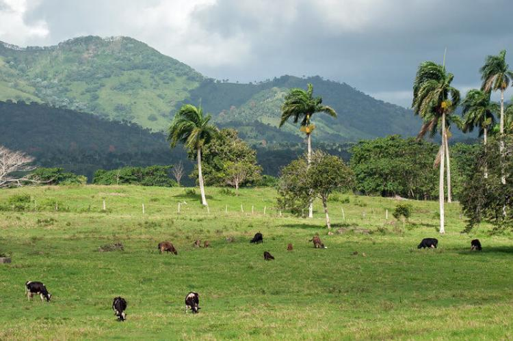 Dominican countryside, Hispaniola