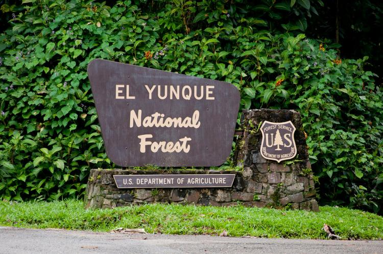 Entrance sign at El Yunque National Forest, Puerto Rico