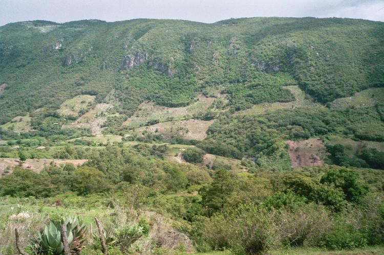 Forest fragmentation on Celaque's slopes due to logging, Honduras