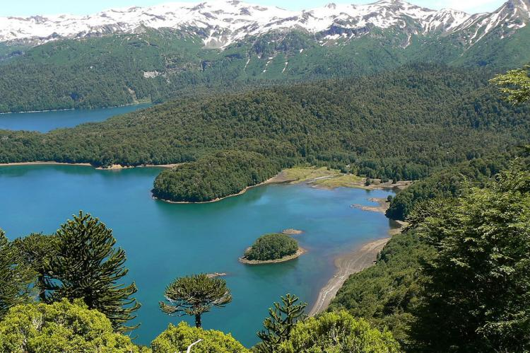 View over Lago Conguillío, Conguillío National Park, Chile