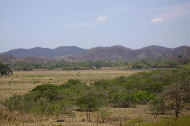 Pampa in Guanacaste Conservation Area