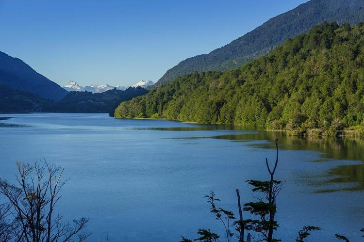 Puyuhuapi Channel, Queulat National Park, Chile