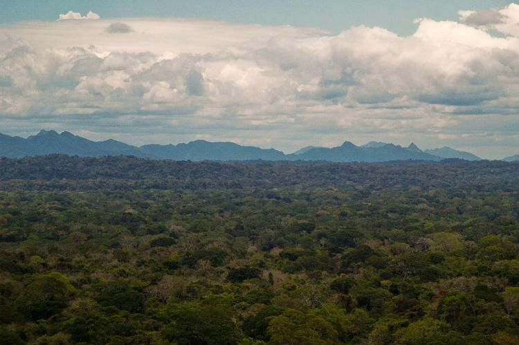 View of the Andean foothills and plains of the Madidi National Park adjoining the Bahuaja-Sonene National Park