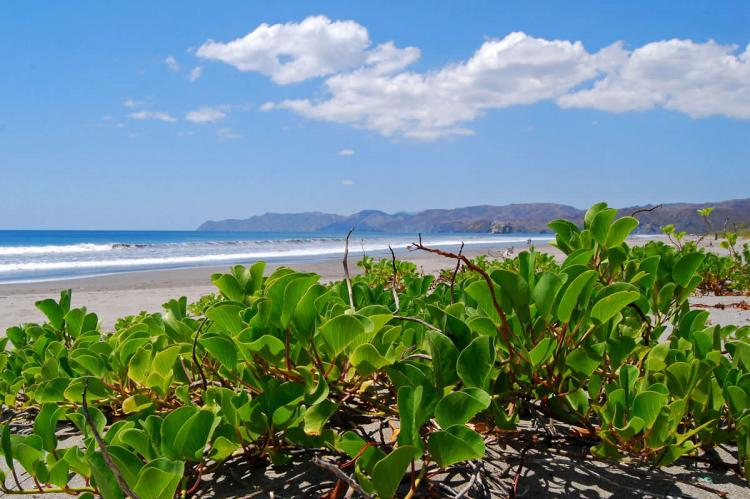 Beach at Santa Rosa National Park — Guanacaste Province, northwestern Costa Rica