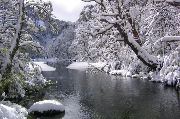 Snowfall in Huerquehue National Park (Chile)