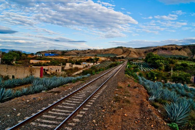 Railroad at Tequila, Jalisco, México