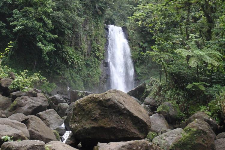 Trafalgar Falls at Morne Trois Pitons National Park, Dominica