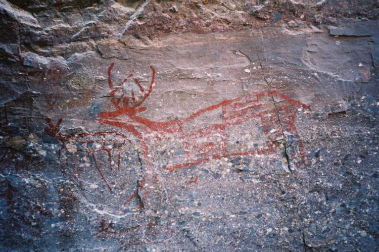 Trinidad deer rock painting, Sierra de San Francisco, Mexico