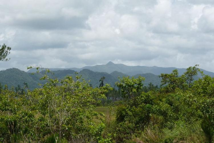 View of the Maya Mountains, Cockscomb Range and Victoria Peak, Belize