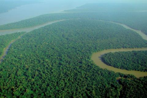 Aerial view of the Amazon River and the Amazon Rainforest