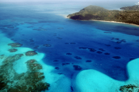 Coral Reefs at Providencia island, , Colombia