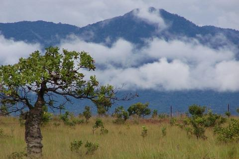 Kanuku Mountains as seen from Lethem, Guyana