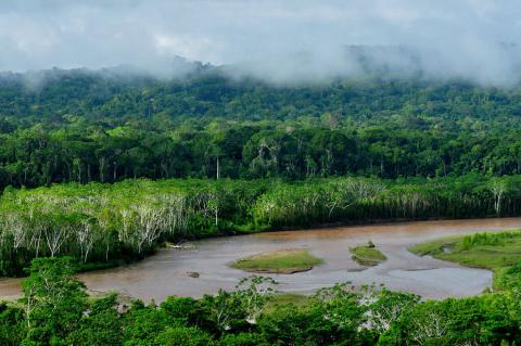 River flowing through Madidi National Park, Bolivia