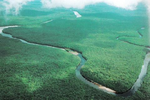 Aerial view of part of the Orinoco Delta