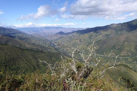 Podocarpus National Park and Biosphere Reserve, Ecuador