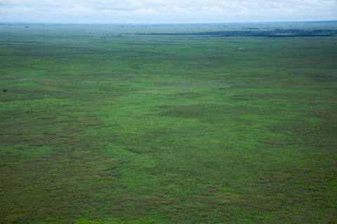 Aerial view of the plains of Beni or Savannah, one of Bolivia's largest ecoregions