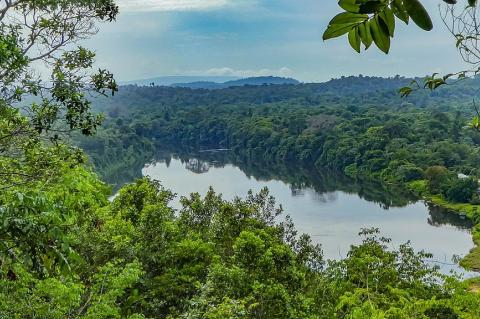View of the Suriname river from the Blauwe Berg, or Blue Mountain, on the former Berg en Dal plantation