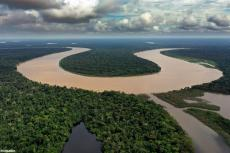 The Javari River where it forms the border between Brazil and Peru. Photo credit: Rhett A. Butler