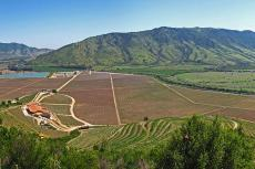 Panoramic view of the Santa Cruz Vineyard in the Colchagua Valley of Chile, Central Valley