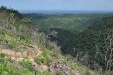 Maya Mountains, Cayo District, Belize