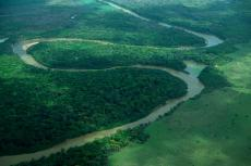Aerial view of the Rupununi River, Guyana